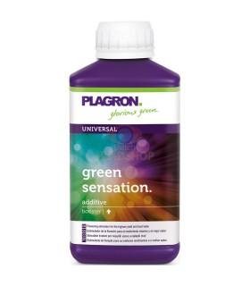 Plagron grüne Sensation 250 ml