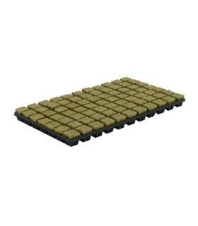 Cultilene Steenwoltray 2x2 cm 150st. p/tray