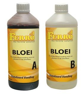 Ferro Standard Bloom nutrition A & B, 1ltr
