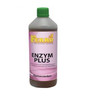 Ferro Enzym Plus 1ltr