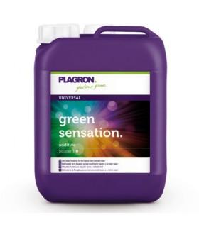 Plagron grüne Sensation 5Liter